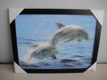 3D Picture w/Frame